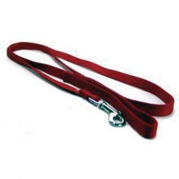 Hamilton Red Single Thick Nylon Lead 5/8 In X 6 Ft