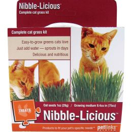 Worldwise Nibble-licious Cat Grass Seed Kit