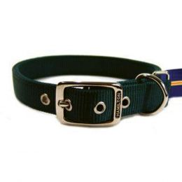 Hamilton Hunter Green Double Thick Nylon Dog Collar 1x22 In