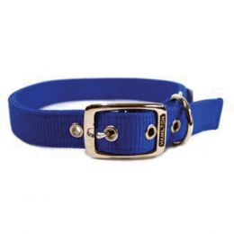Hamilton Blue Double Thick Nylon Dog Collar 1x24 In