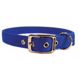 Hamilton Blue Double Thick Nylon Dog Collar 1x28 In