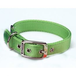 Hamilton Lime Double Thick Nylon Dog Collar 1x22 In