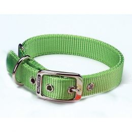 Hamilton Lime Double Thick Nylon Dog Collar 1x26 In