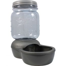 Petmate Clear/silver Mason Jar Replendish Dry Food Feeder 2 Pound